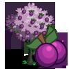 Plum Tree-icon