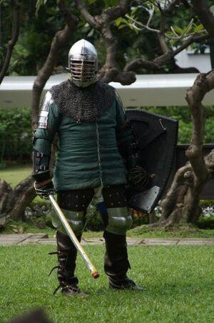 Robert In Armor Photo