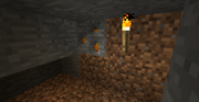 Amber-bearing-stone