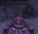Vociferous Meeble