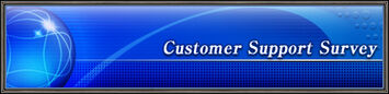 CustomerSupportSurvey