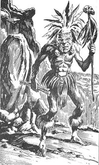 Ilk shaman