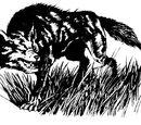 Giant Aardwolf