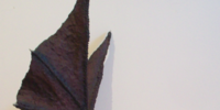 Titan (figurine)