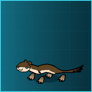 Brown Stoat