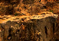 MtCorel-ffvii-fmv-cliff.png