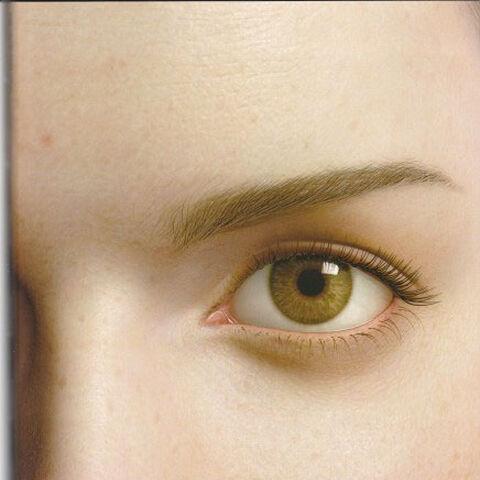 Aki's Eye by Steve Giesler.