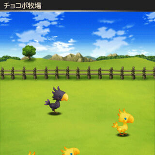 The player's chocobo ranch.