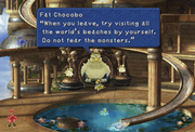 Beaches of the world ff9