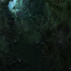 A section of the Evil Forest.