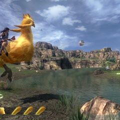 Fang riding a chocobo.