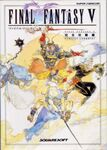 FFV Perfect Conquest