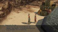 Patient-in-the-desert