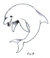File:Mr. Dolphin Sketch.jpg