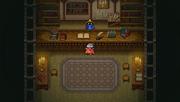 Poft Magic Shop.PNG