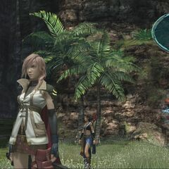 Lightning and Fang in Vallis Media.