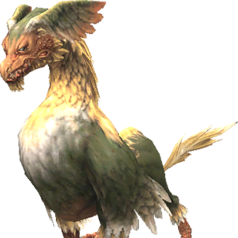 A Hippogryph.