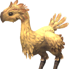Chocobo In game.