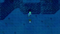 FFD Underwater Cave