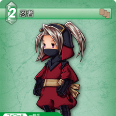 1-066C Ninja (Luneth)