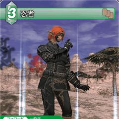 10-052C Ninja (Elvaan)