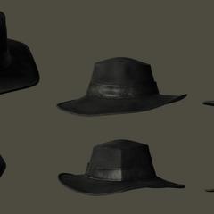 Ardyn's hat.