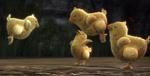 Chocobo Chicks
