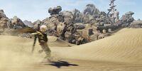 Dead Dunes
