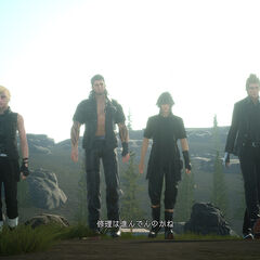 Noctis and the party walking in Duscae.