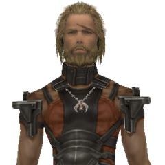 Basch's model when dressed in pilfered armor.