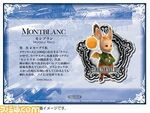 Montblanc ffxii pin card