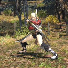 Sasuke's Blades.