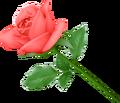 Dissidia Wild Rose