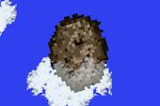 FFV Meteor Outside