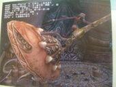 Yuna FFXIII Concept