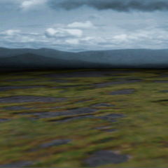 The battle background for the marshes in <i><a href=