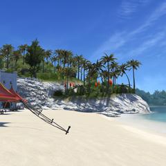 The beach.