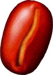 File:Sahara Nut.png