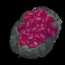 Raw garnet gem