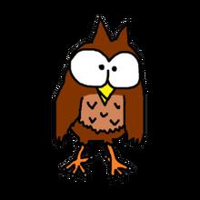 Pet brown owl
