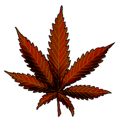 File:Cannabis four way.png