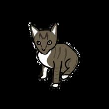 Pet kitty lubs