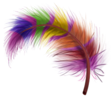 Fabulous feather