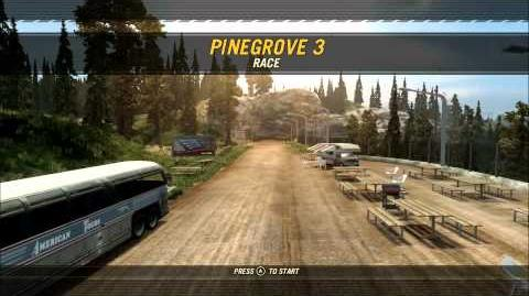 Pinegrove 3 overview
