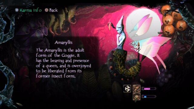 File:Folk Amaryllis screen.jpg