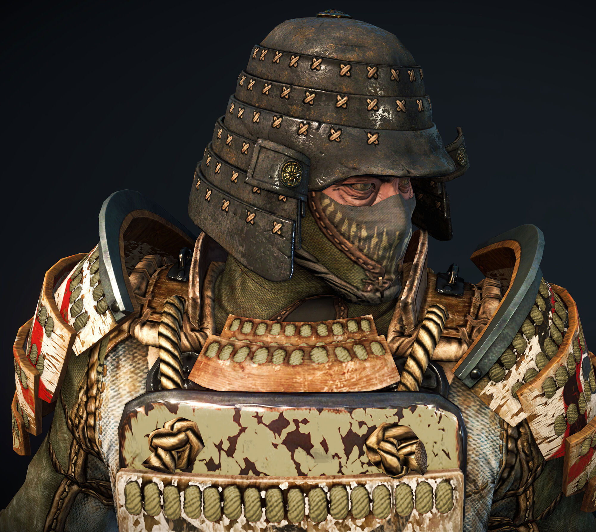 Image - Fh Hero-detail-orochi-armor-2 Ncsa.jpg