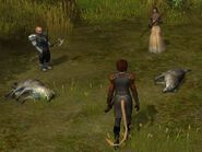 Maiden's Glade wolves