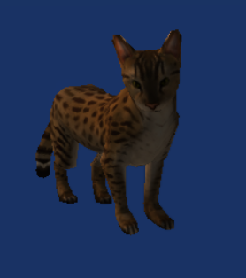 File:Neverwinter Nights 2 - Creatures - Cat.png