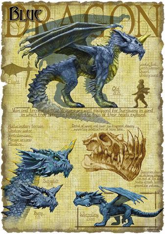 File:Blue dragon anatomy - Richard Sardinha.jpg