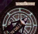 Shadowdale (novel)